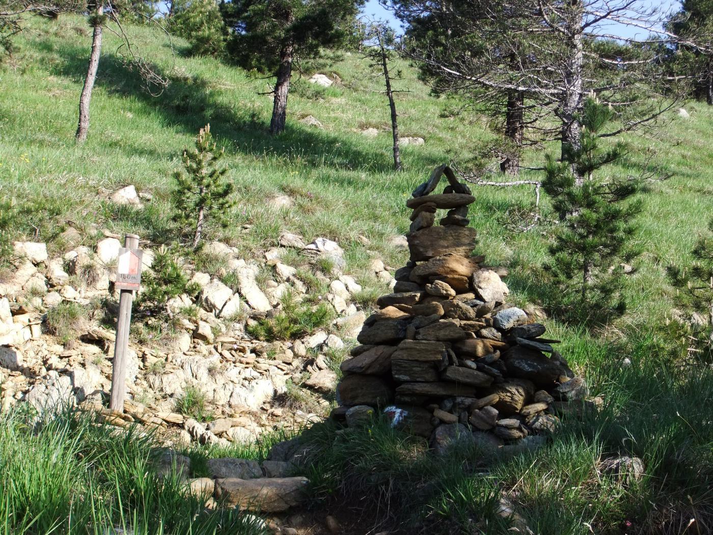 Artistico ometto di pietre