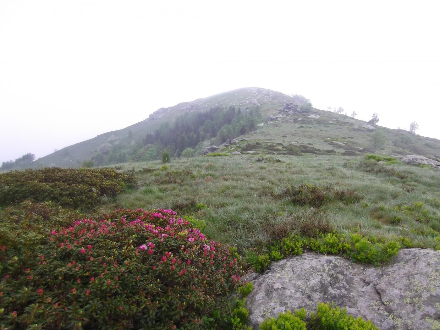 la salita al Monte Servin