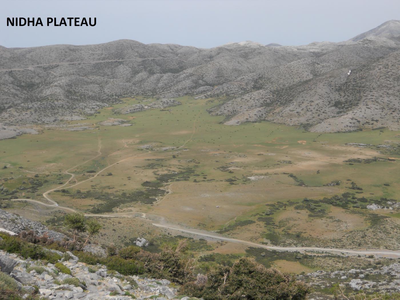 nidha plateau