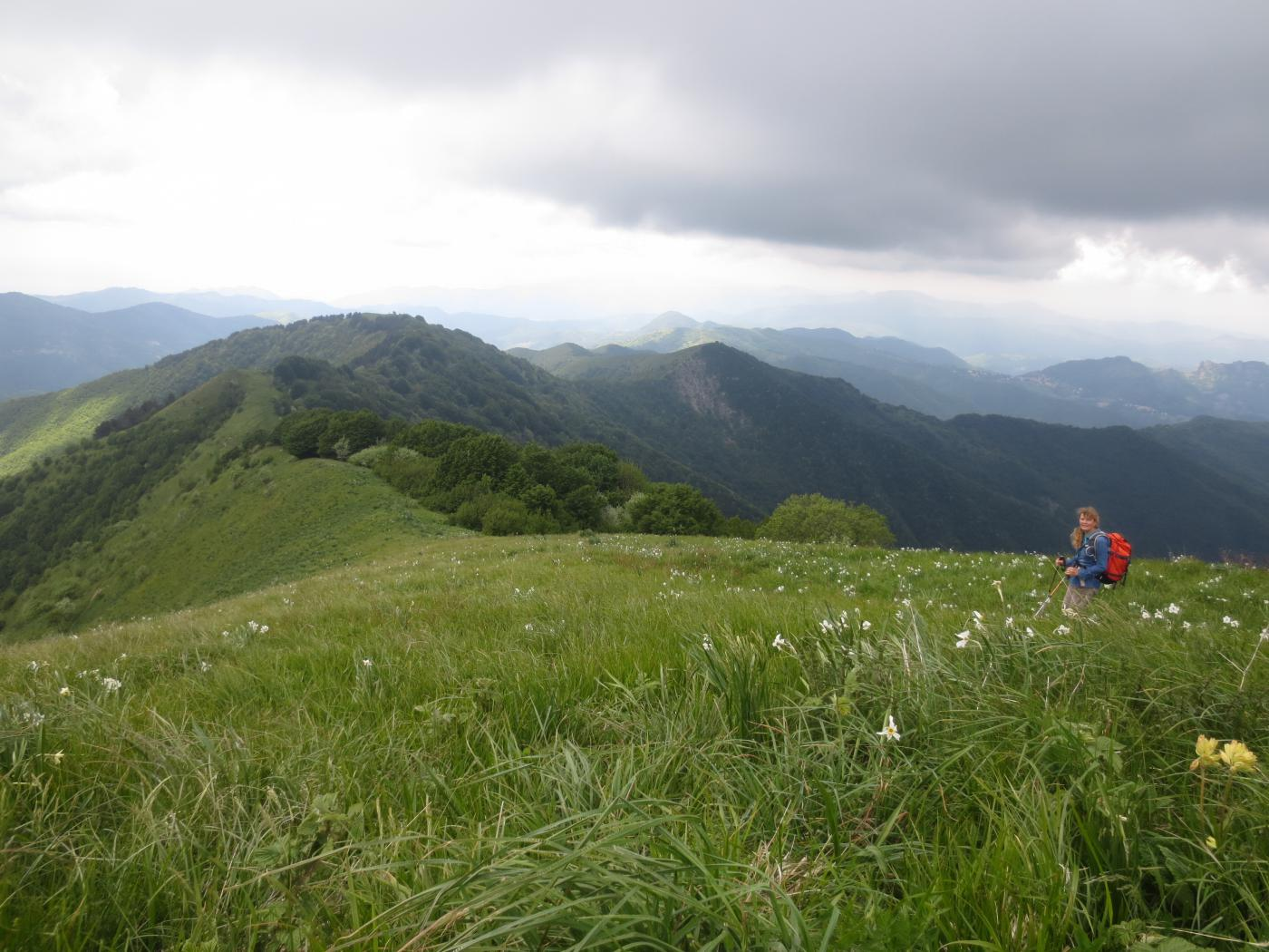 Antola (Monte) da Tonno per il Monte Buio 2015-05-24