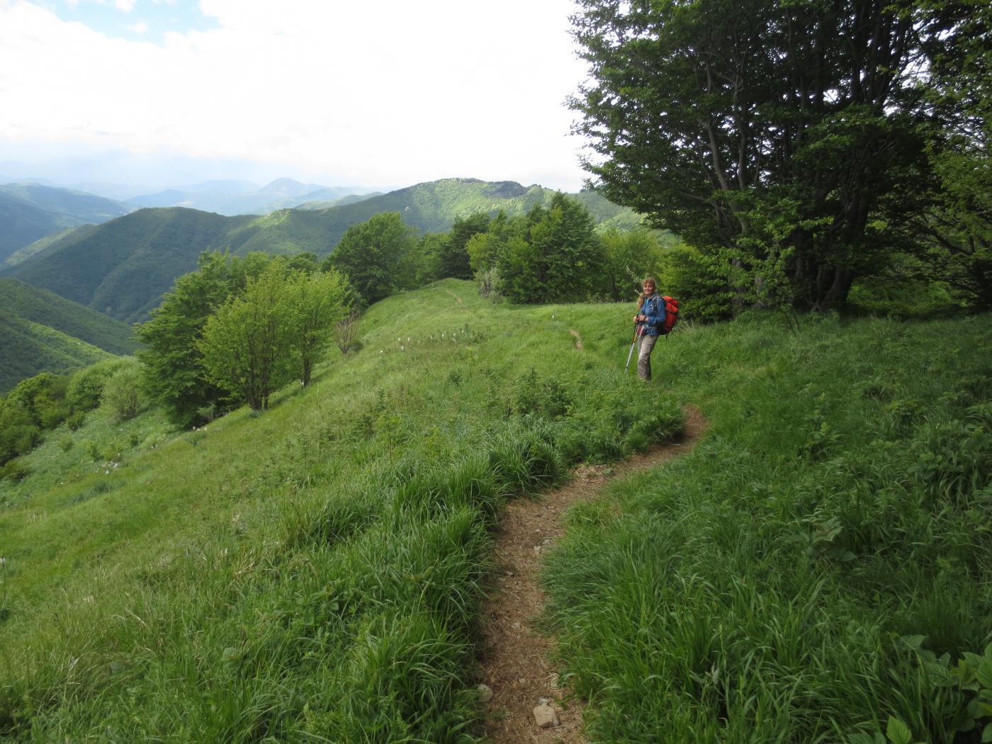 Sulla bucolica cresta tra il monte Antola e il monte Buio