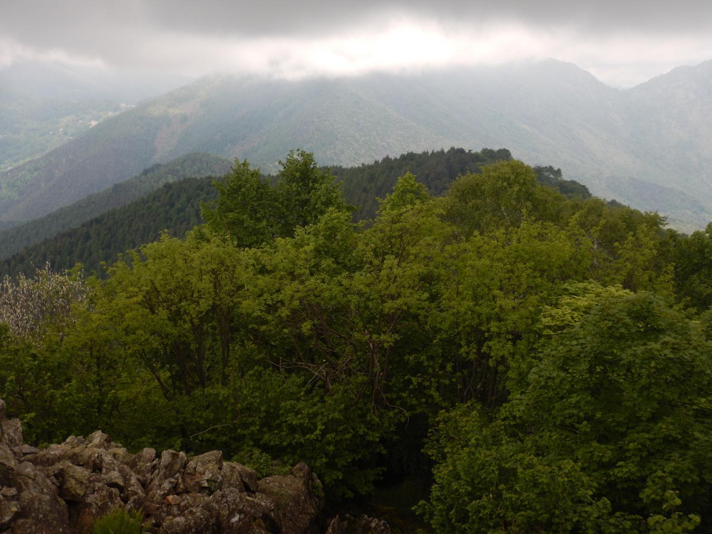 24-05 Cresta verso Madonna della Bassa
