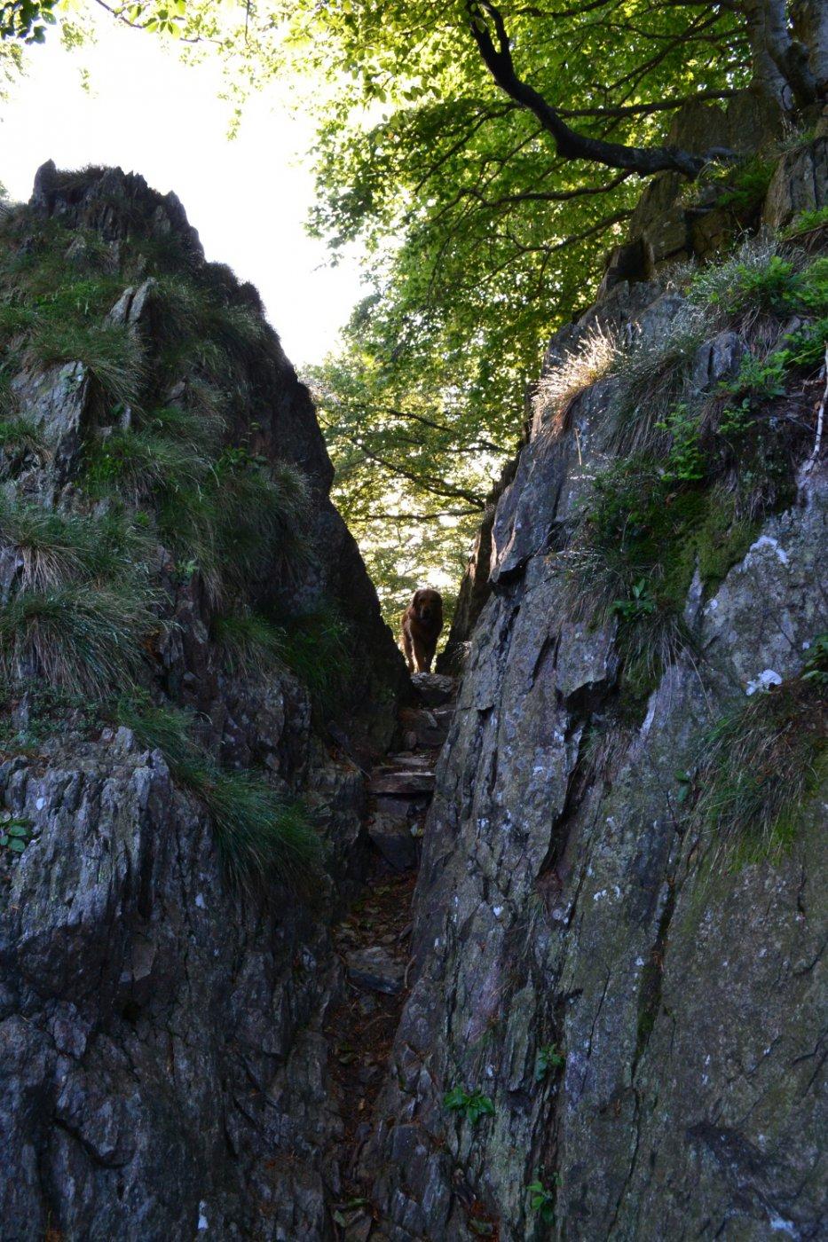 lo stretto intaglio che conduce in Val Pogallo