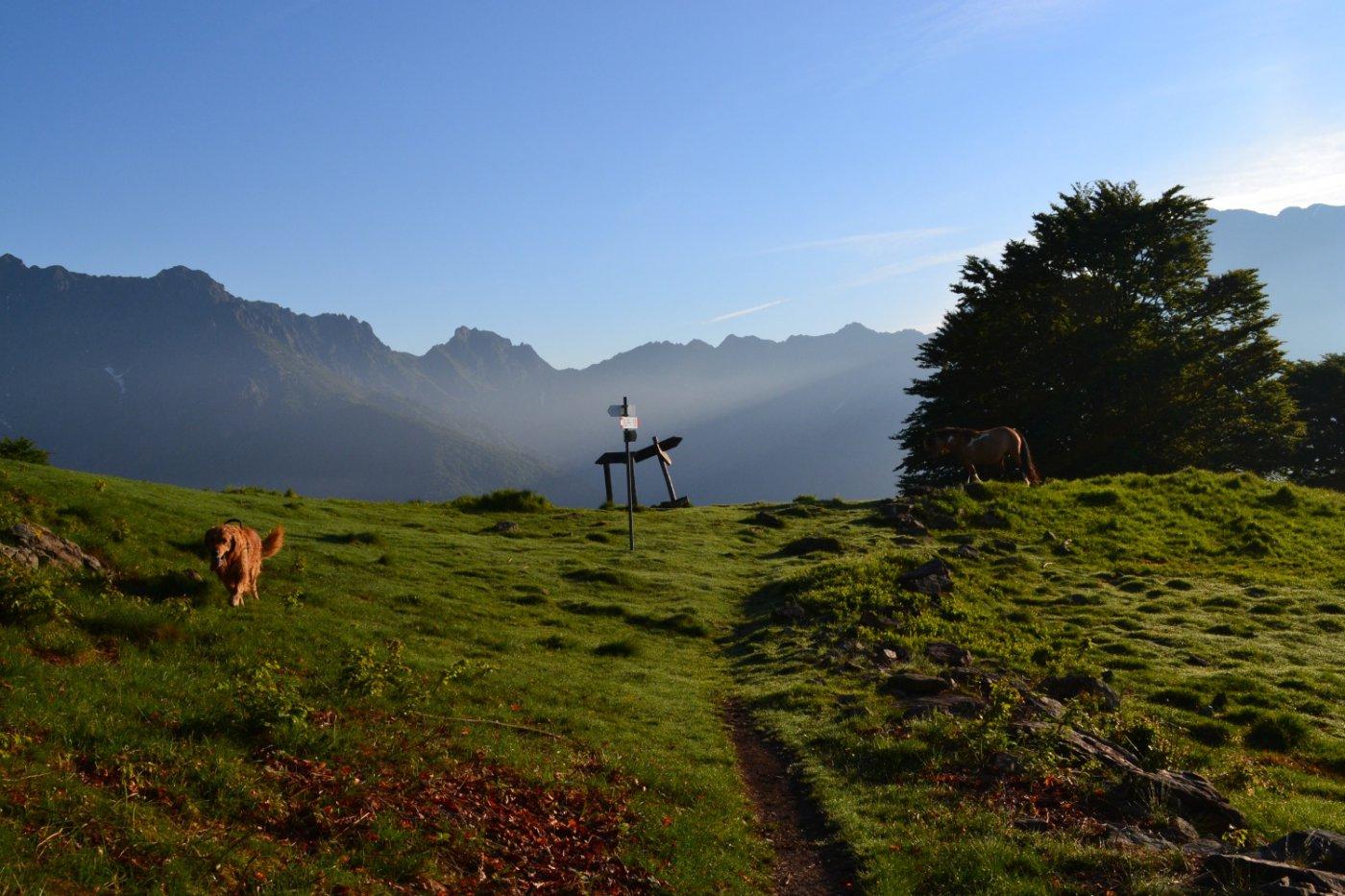 bivio all'Alpe Leciuri da prendere a sinistra per la Cima Sasso