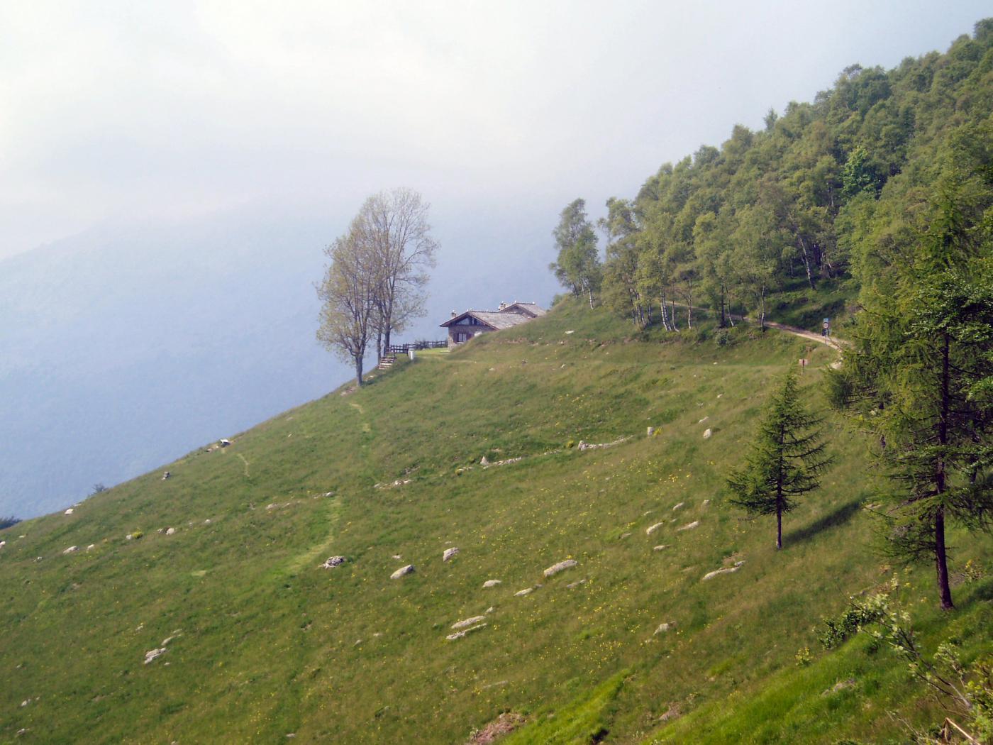alpe belvedere