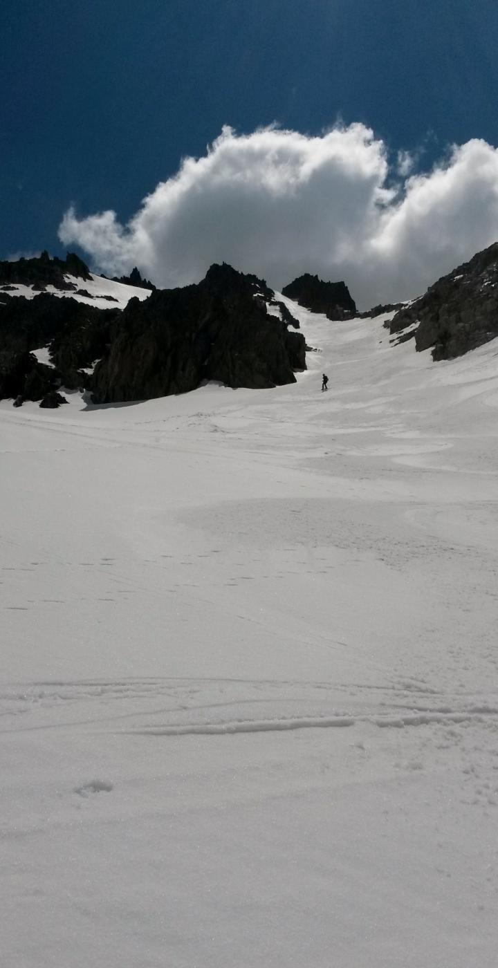 neve cotta a puntino