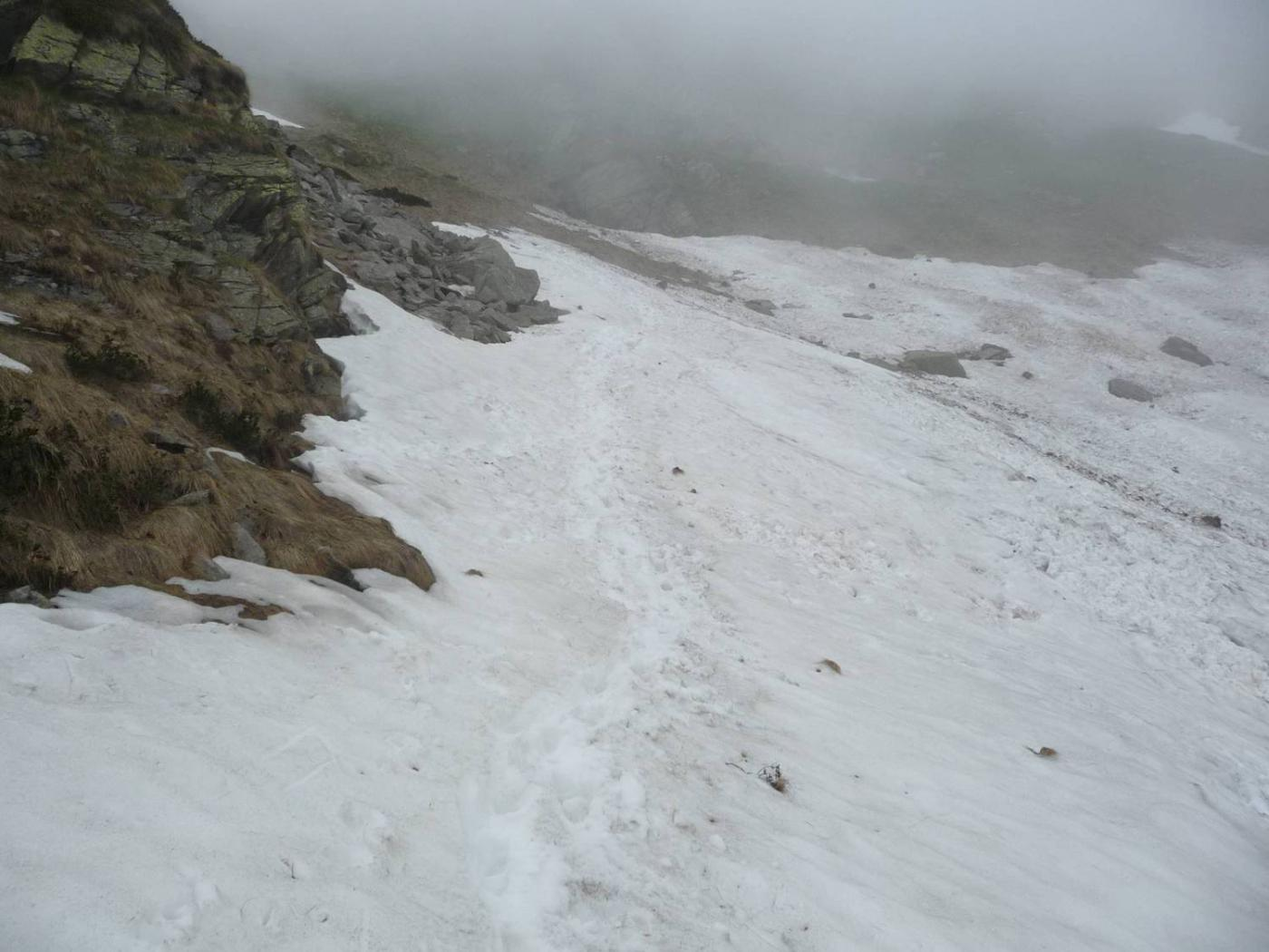 neve sotto il Colle Mologna Grande