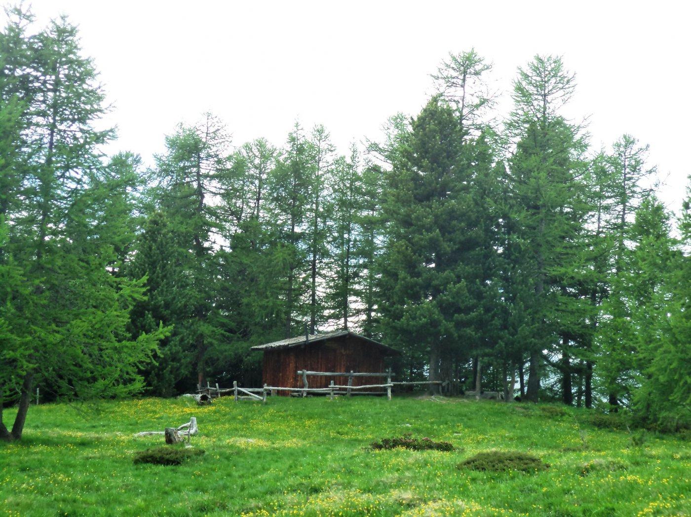 baita ambrogio: un angolo di Svizzera