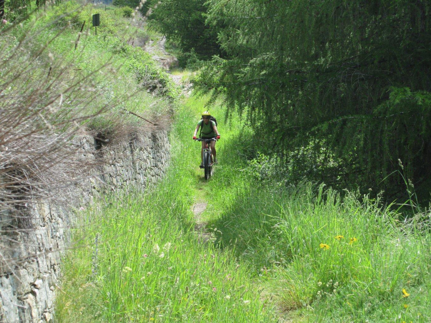 Epinel, Valnontey, Lillaz e Gimillian (Frazioni) da Cogne, Gran Paradiso Bike 2015-06-07
