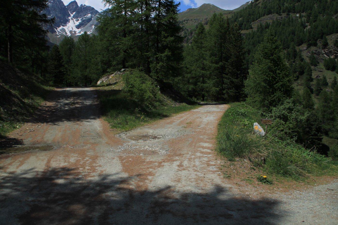 Il bivio in cui si lascia il sentiero 14, procedere diritti.