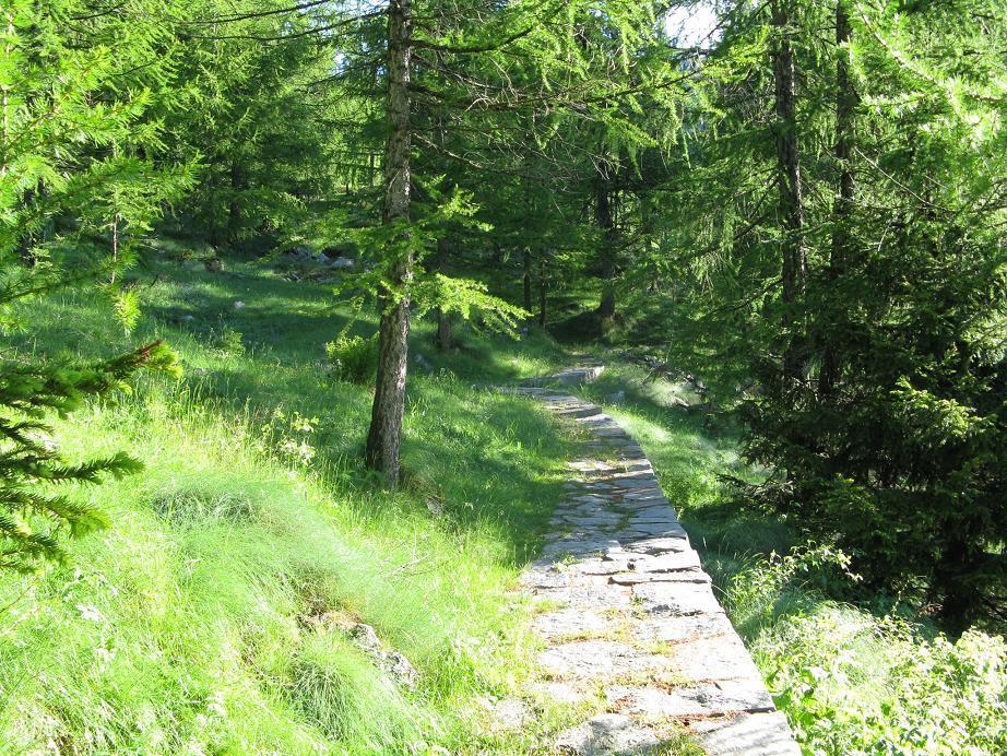 primo tratto del sentiero: una bella mulattiera lastricata