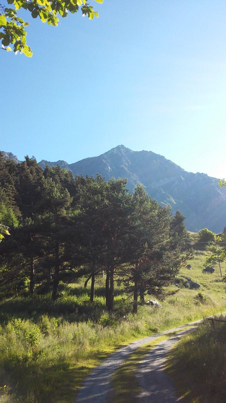Grand'uia mt.2666 dall'Alpe le Combe