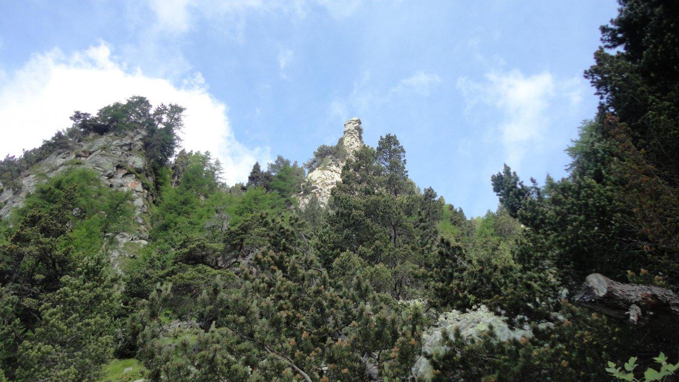salendo al Monte Lyan