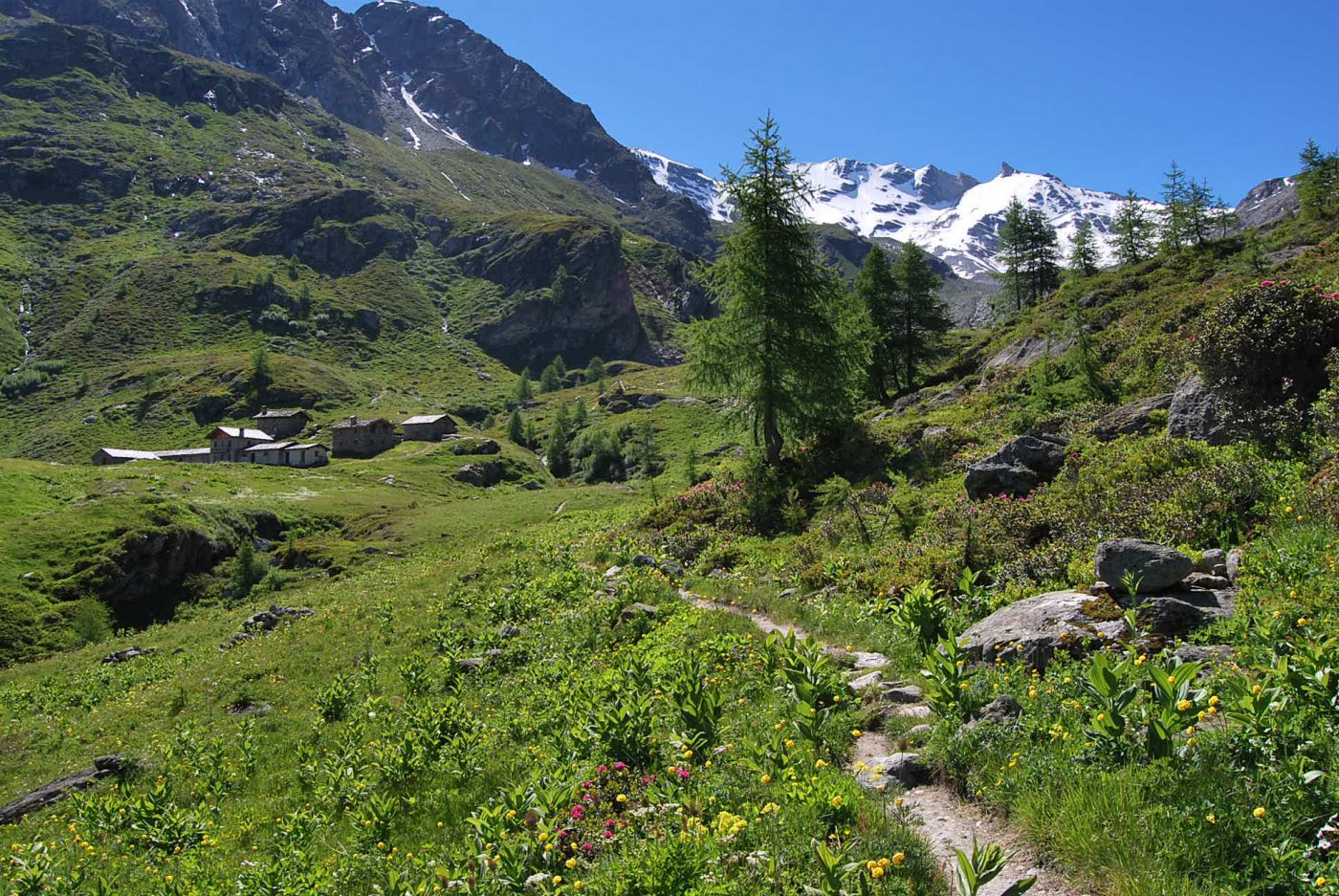 L'arrivo a Mont Fortchat, con la Gd Rousse sullo sfondo