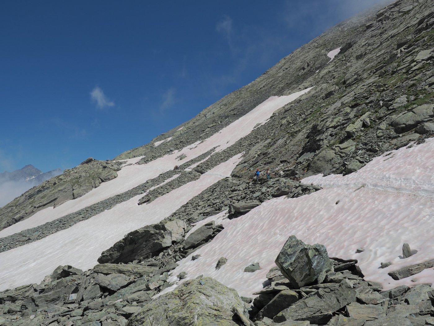 Serie di nevai poco prima di arrivare al Colle di Viso