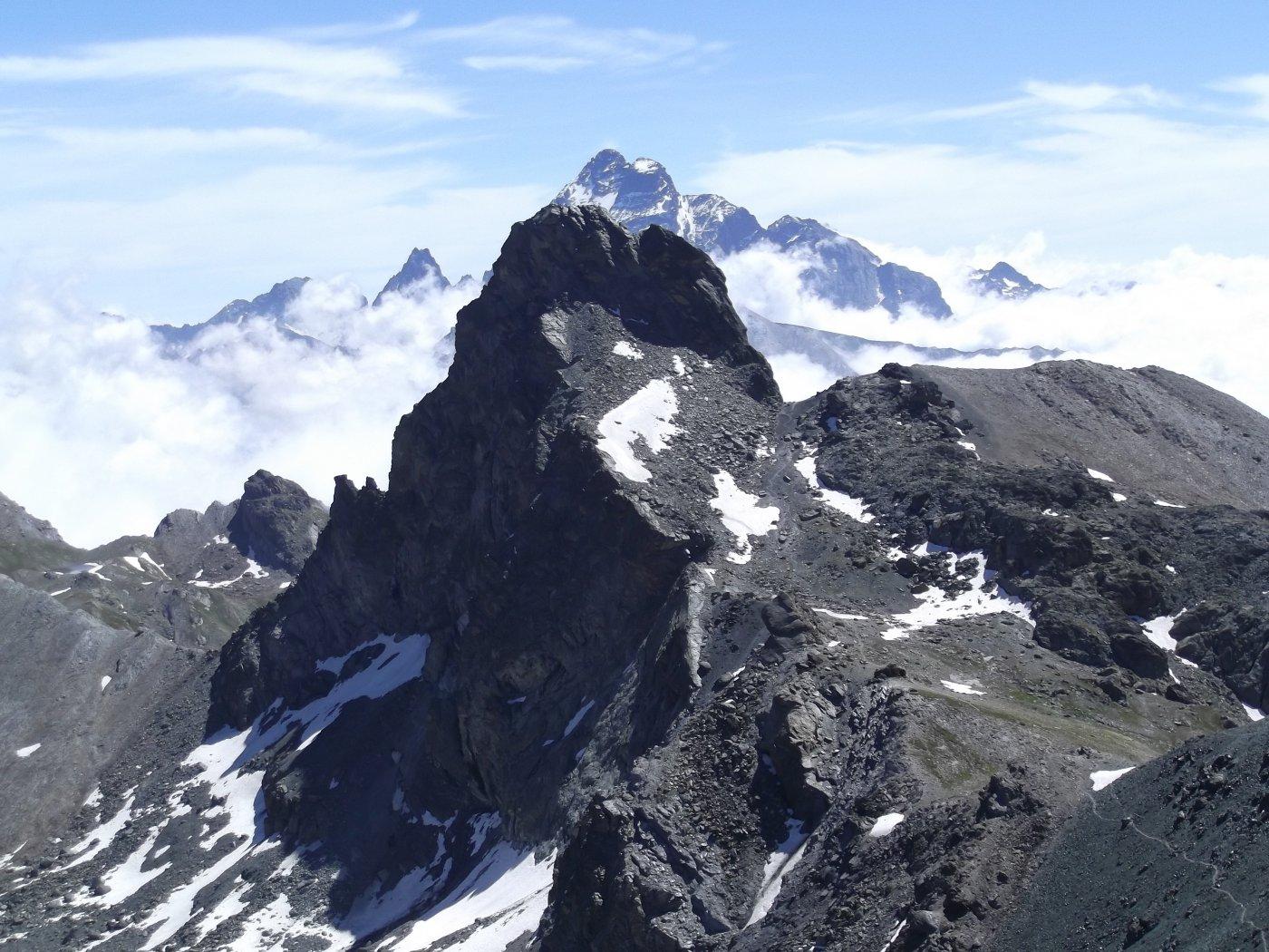 il Roc della Niera e Monviso visti dal Pic