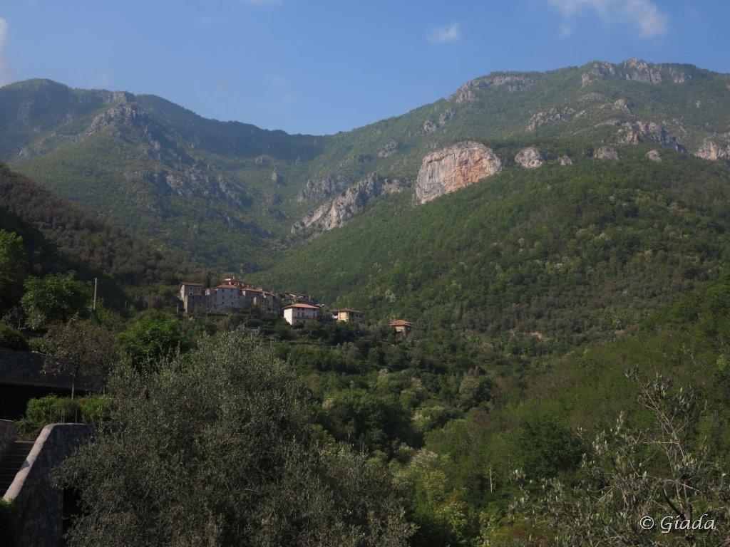 Gettine (Monte delle) da Oresine, anello Passo di Cerisola, Nasino, Colletta 2015-07-06