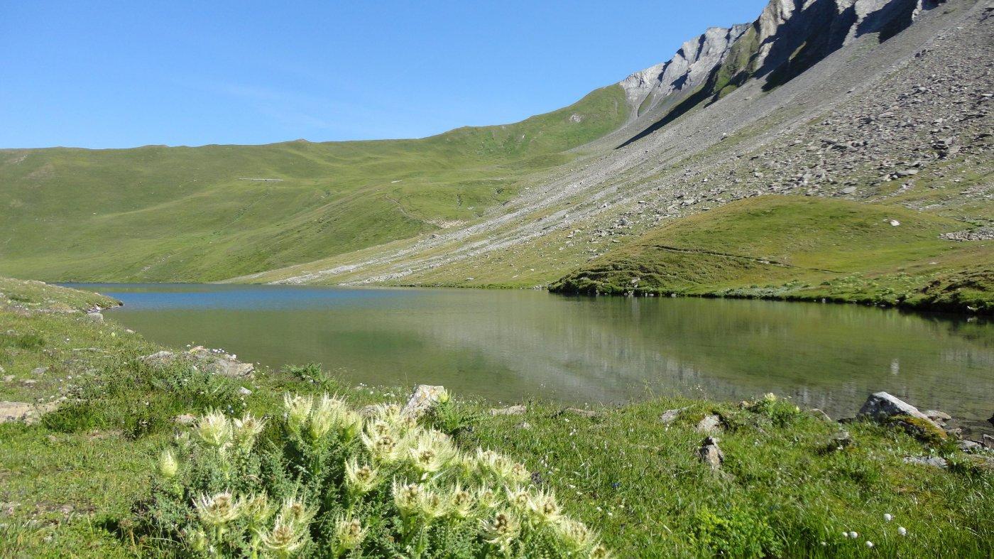 arrivo al lago di Licony