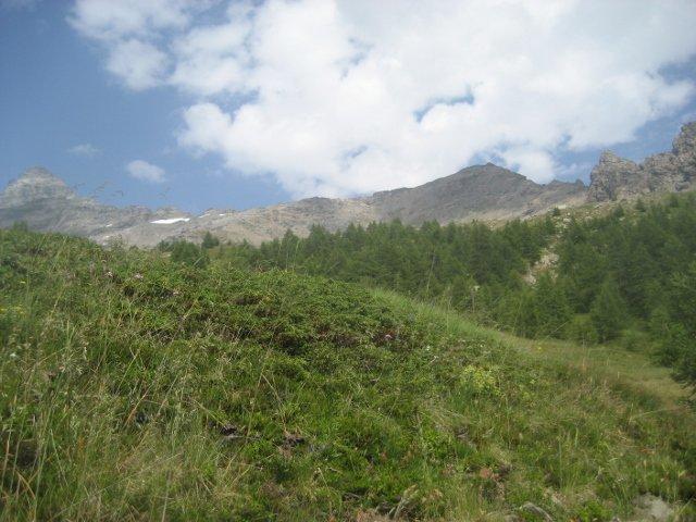 Chesselhorn (cima a centro dx della foto), ripreso durante la discesa vicino al bosco sopra Homatta
