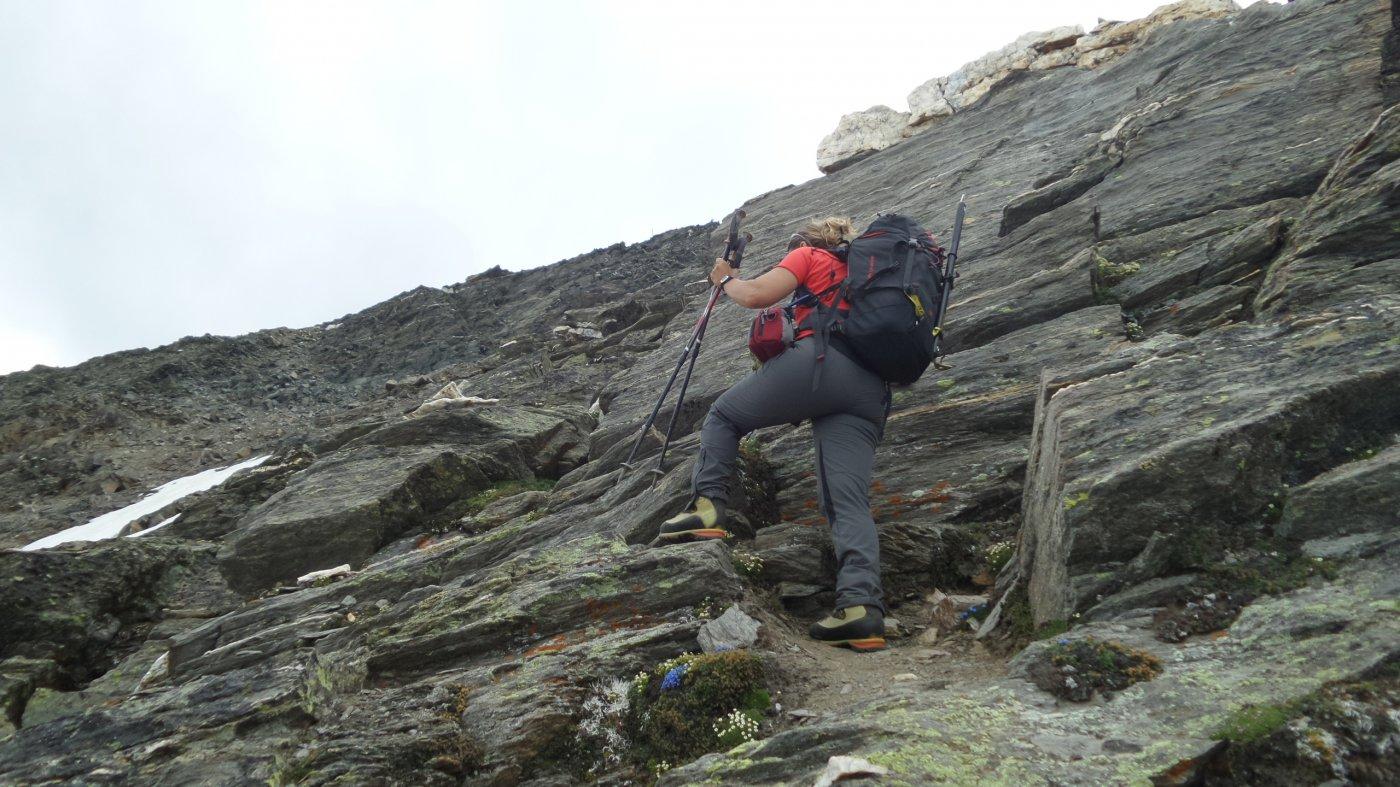 Mary nella parte alta della scarpata rocciosa del versante Sud del Wasenhorn (18-7-2015)