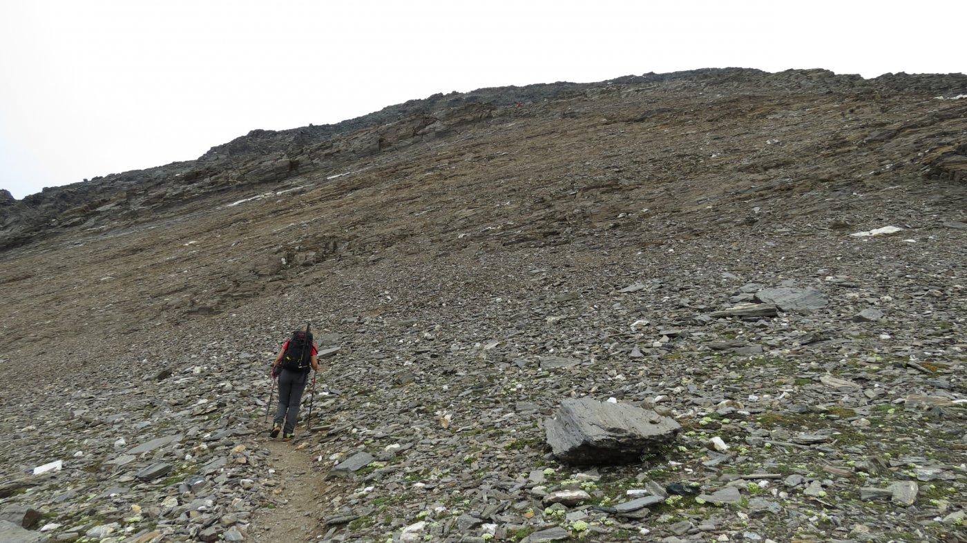 salendo verso la scarpata rocciosa che porta alla base della cresta Sud del Wasenhorn (18-7-2015)