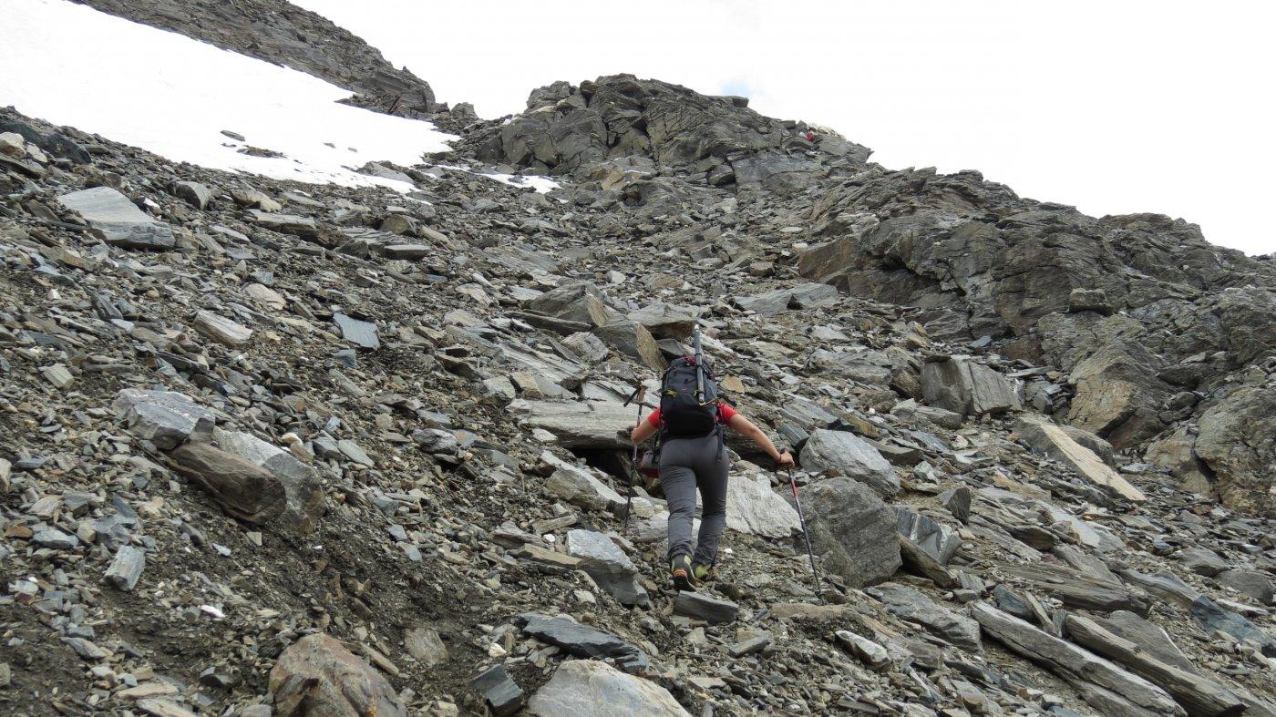 raggiungendo la base della cresta Sud del Wasenhorn (18-7-2015)