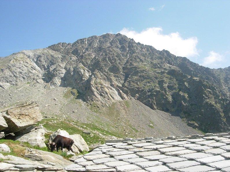 Il Mont Nery, con a sin. la cresta di salita, visto dal Bivacco
