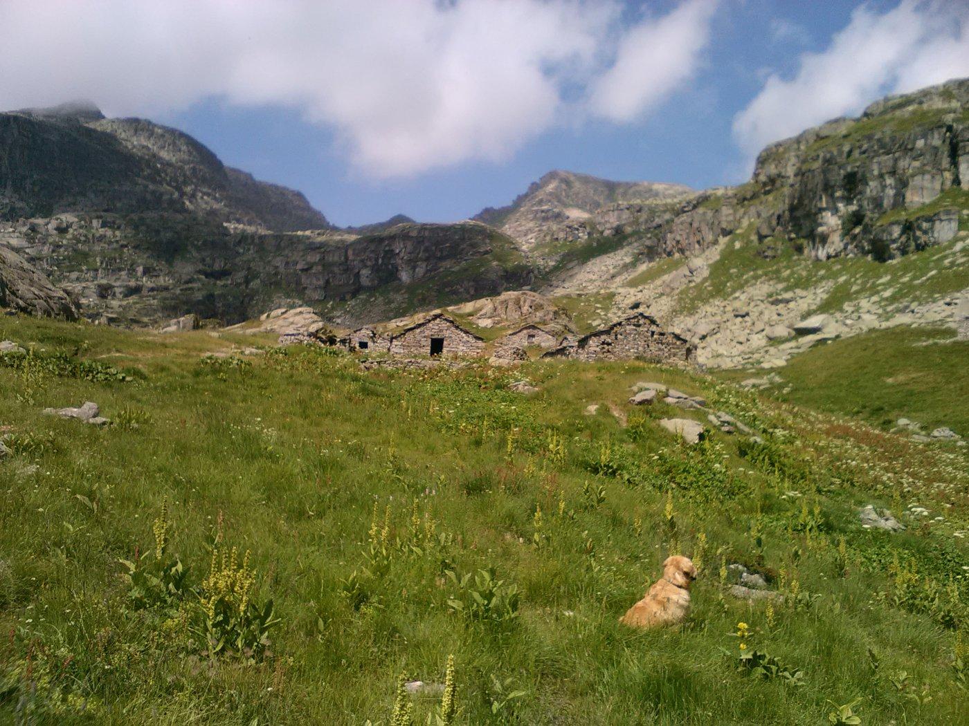 alpe Vailet e colle dellaTerra sullo sfondo