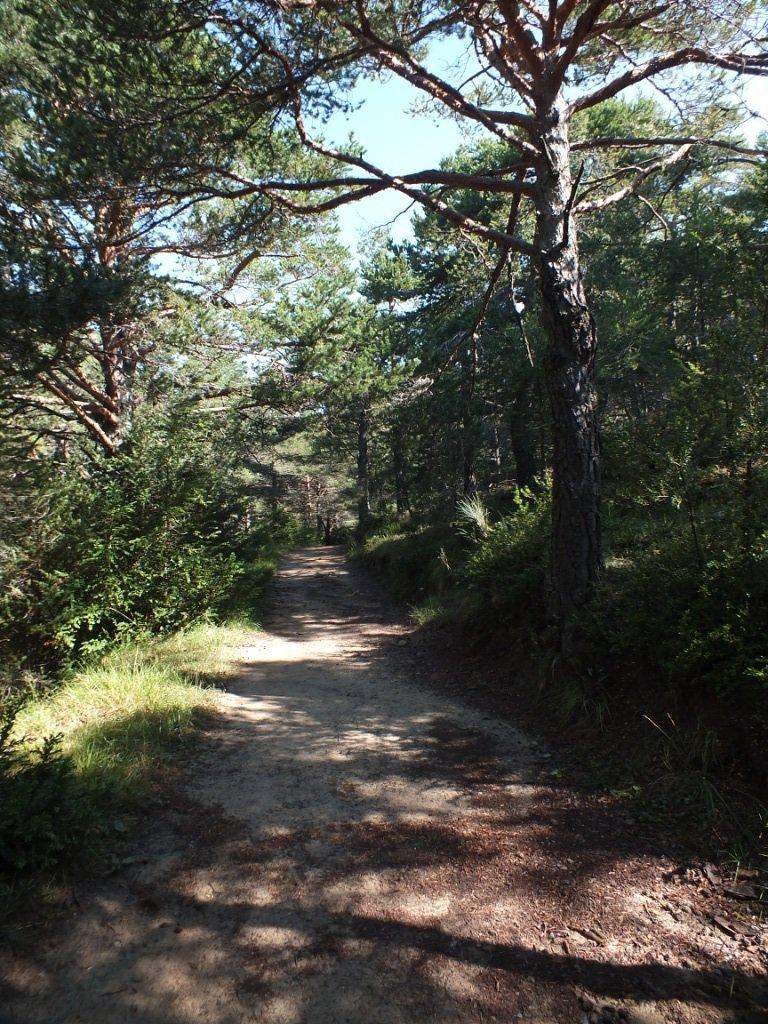 Sentiero di accesso