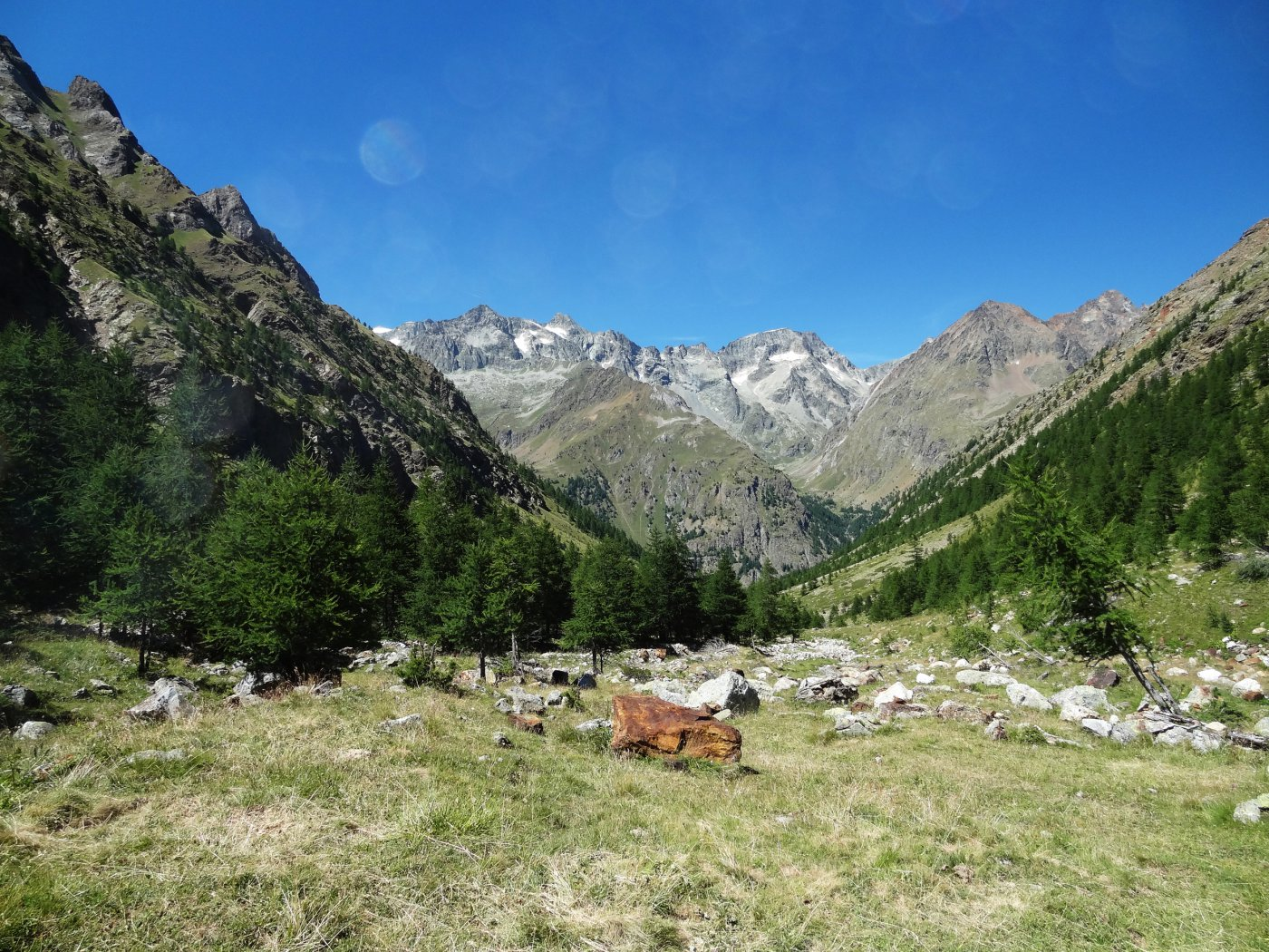 Montagnaya (Punta di) da La Ferrera per il Colle di Montagnaya 2015-07-28