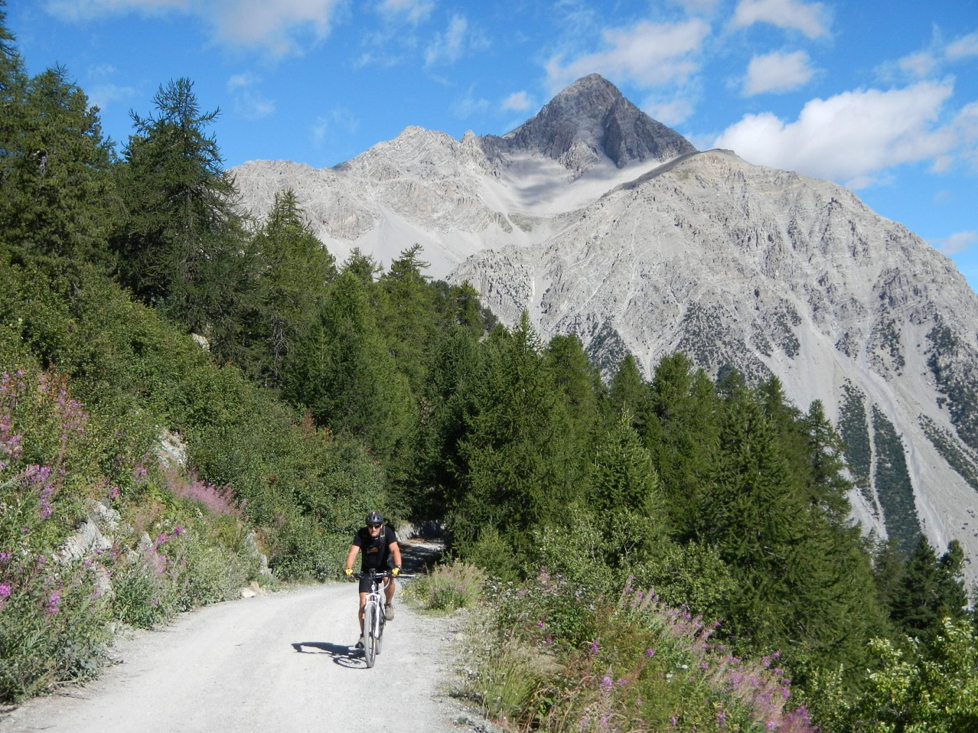 lo sterrato verso Sagnalonga....Monte Chaberton sullo sfondo.