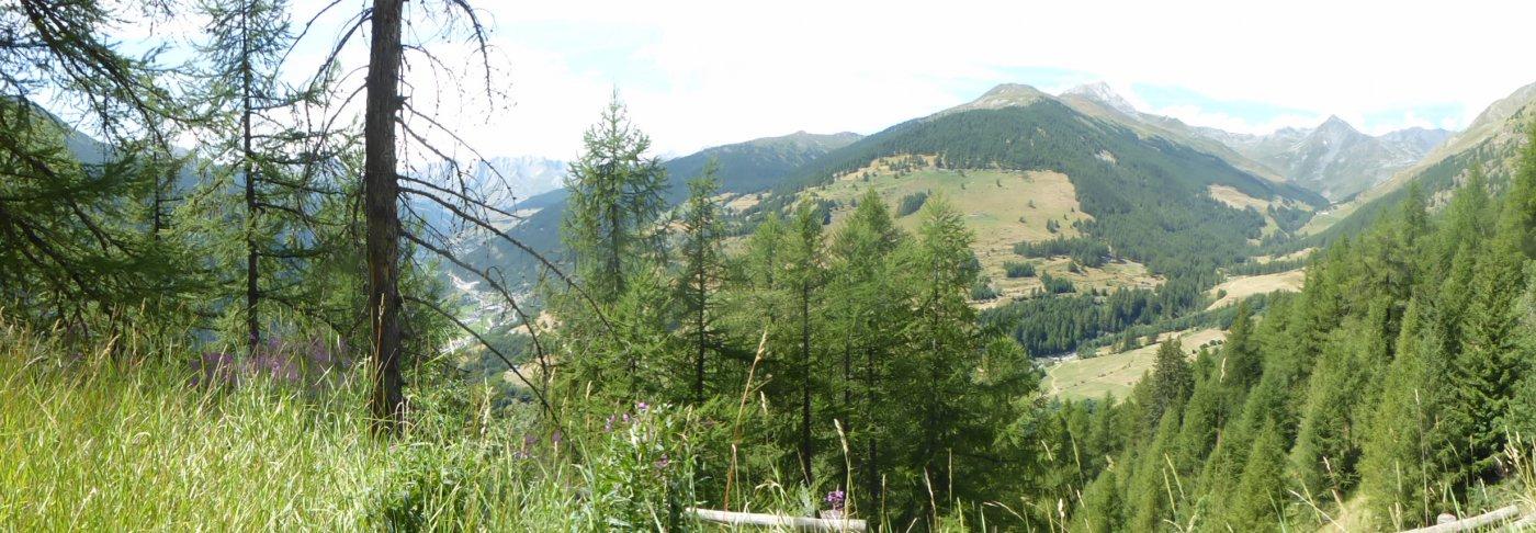dal Ru du Menouve uno sguardo sul vallone appena attraversato