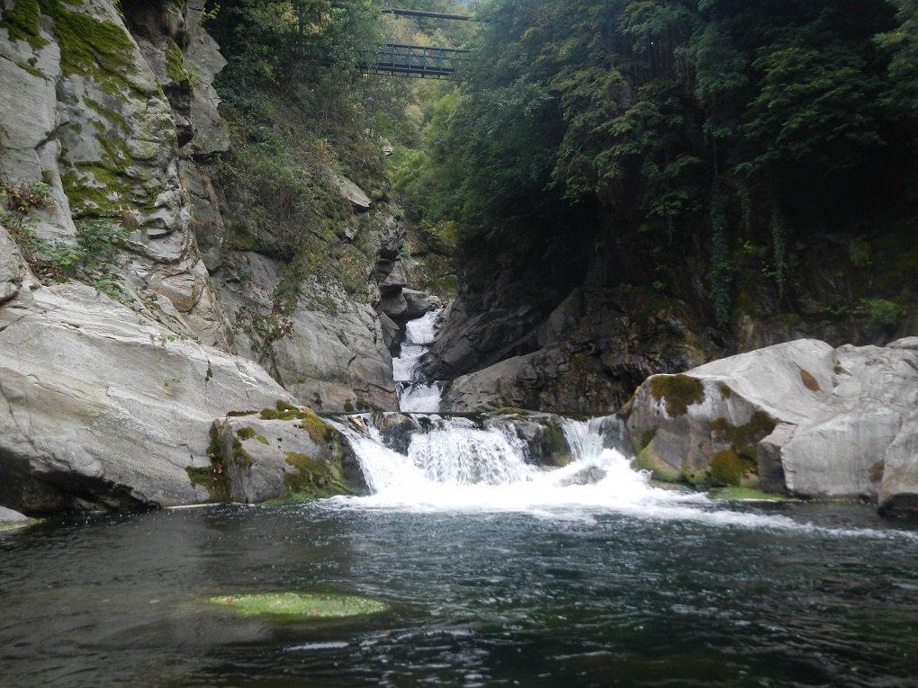 possibile S22 dal ponte nella vasca a monte