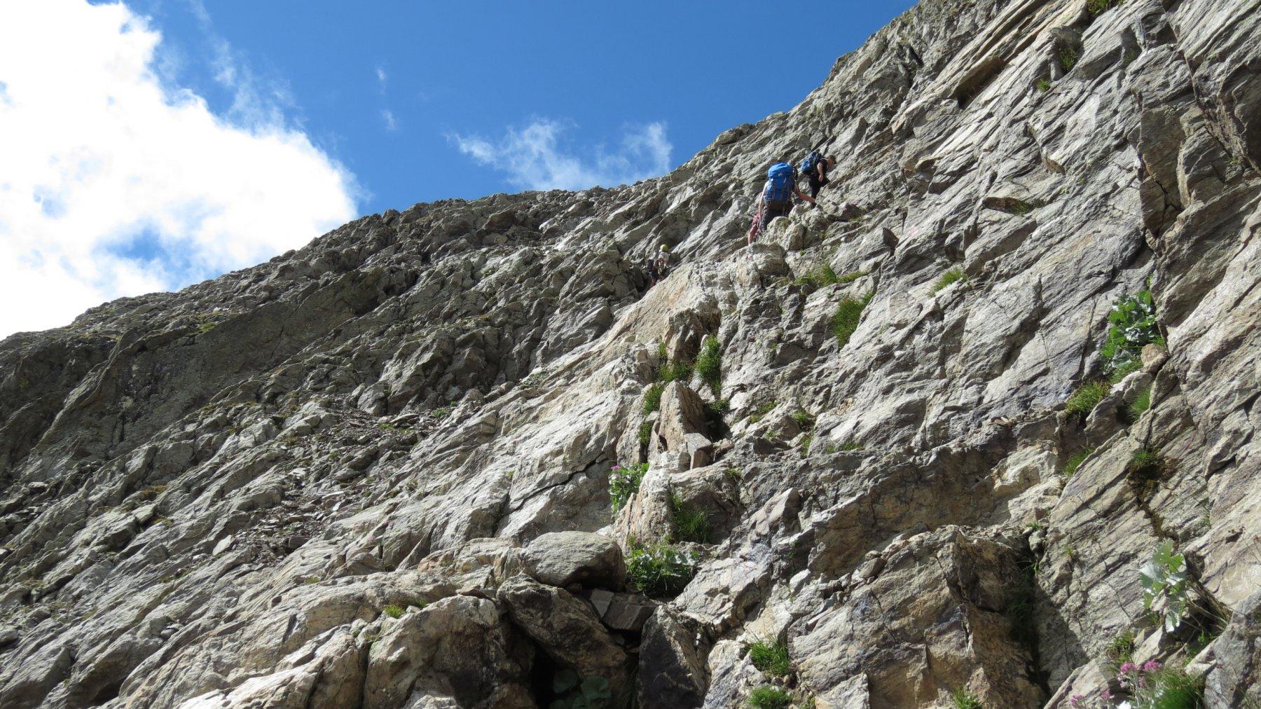 salendo lungo il versante NE del Becco Alto di Ischiator...02 (2-8-2015)