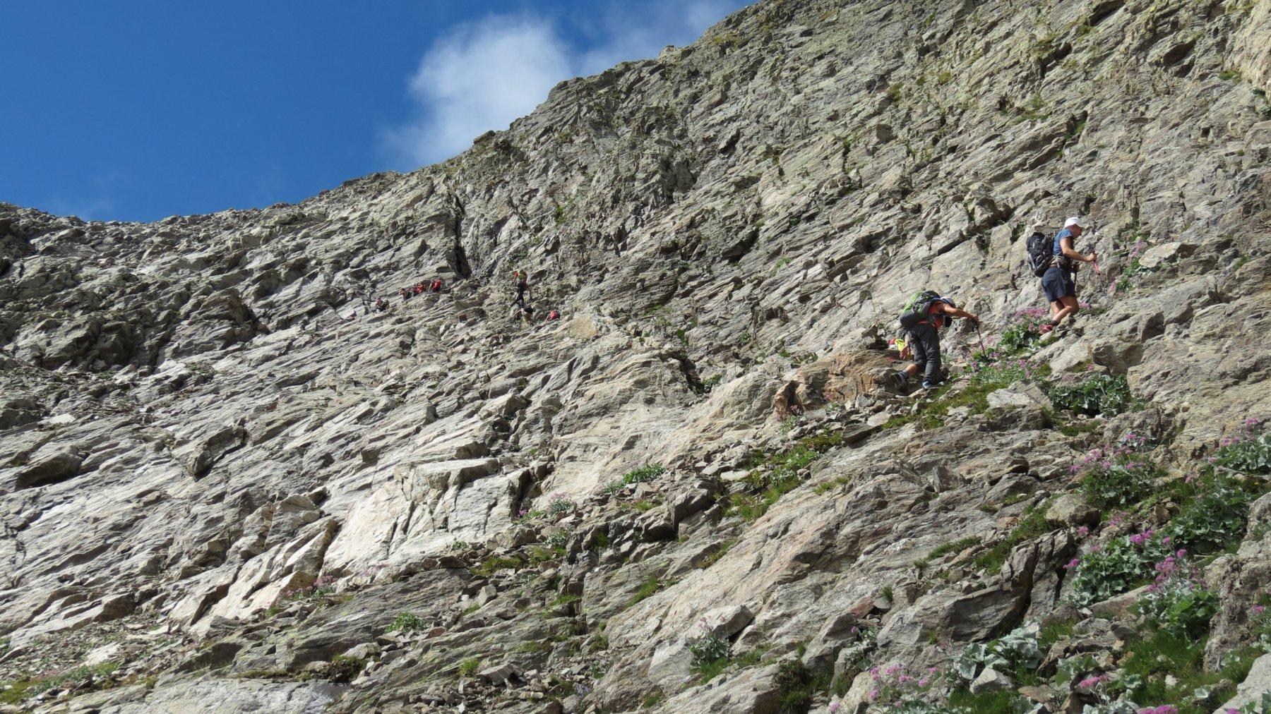 salendo lungo il versante NE del Becco Alto di Ischiator...01 (2-8-2015)