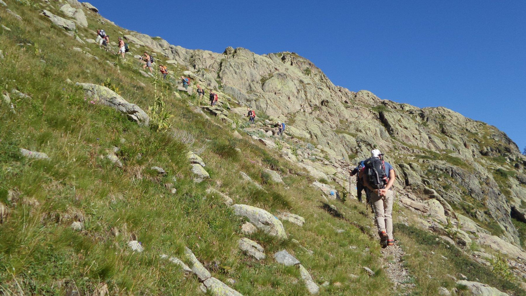 salendo i pendii erbosi sopra la Bassa di Schiantalà (2-8-2015)