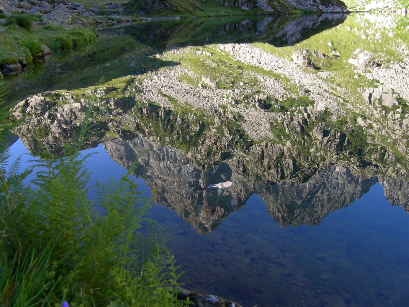 riflessi nel lago Fiorenza (2)