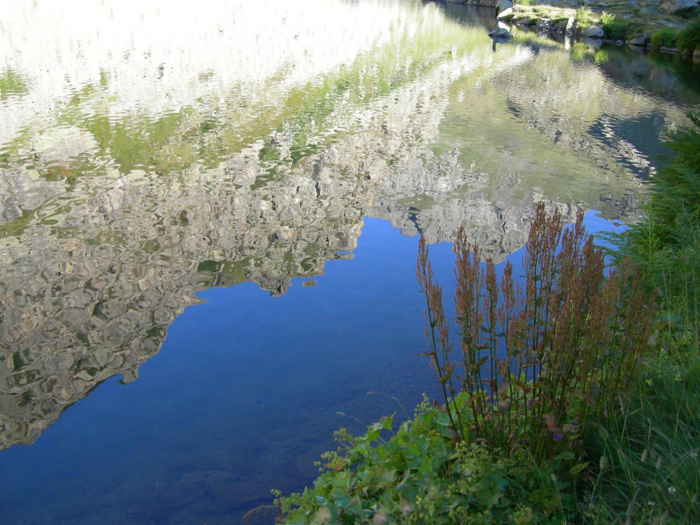 riflessi nel lago Fiorenza (1)