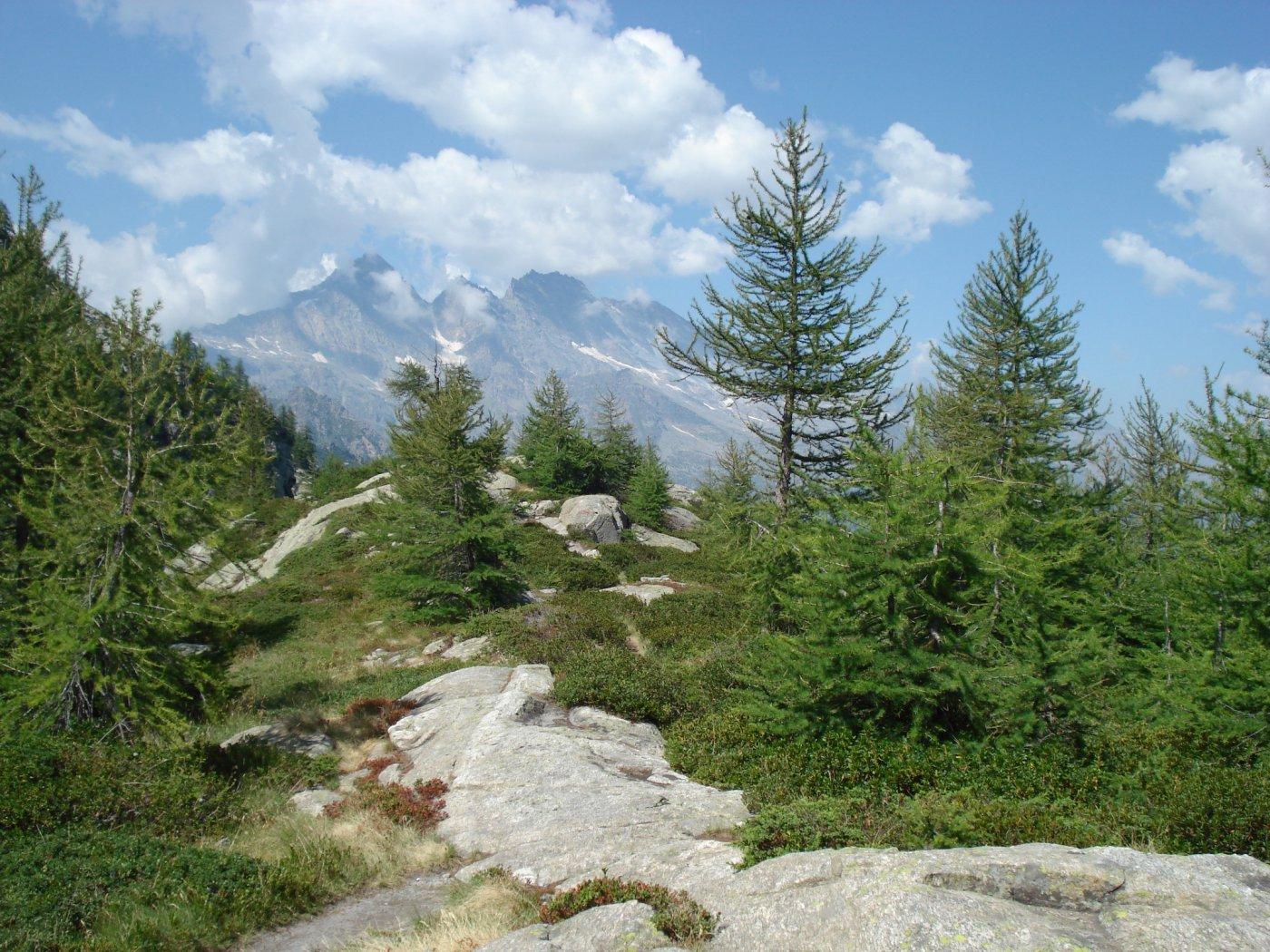 Panoramica sul Col Perdu e sulle Levanne