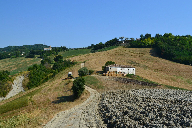 paesaggio agricolo in direzione della Chiesa di Farneto