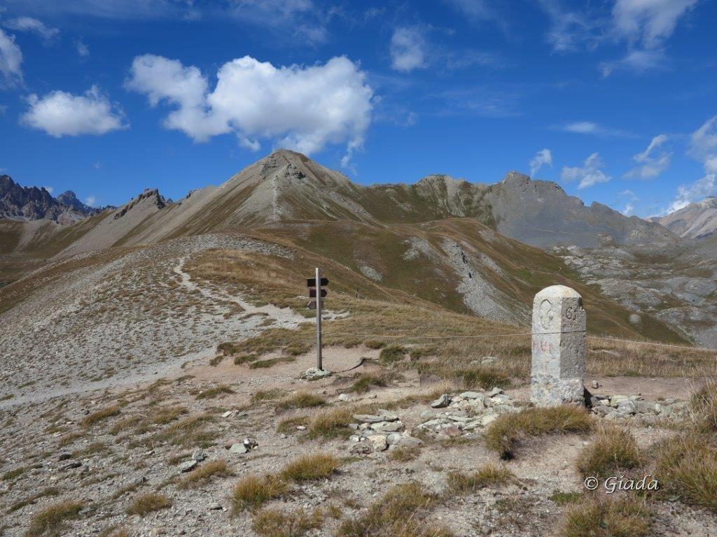 Soubeyran (Monte) o Tete de l'Alp da le Pontet 2015-08-20