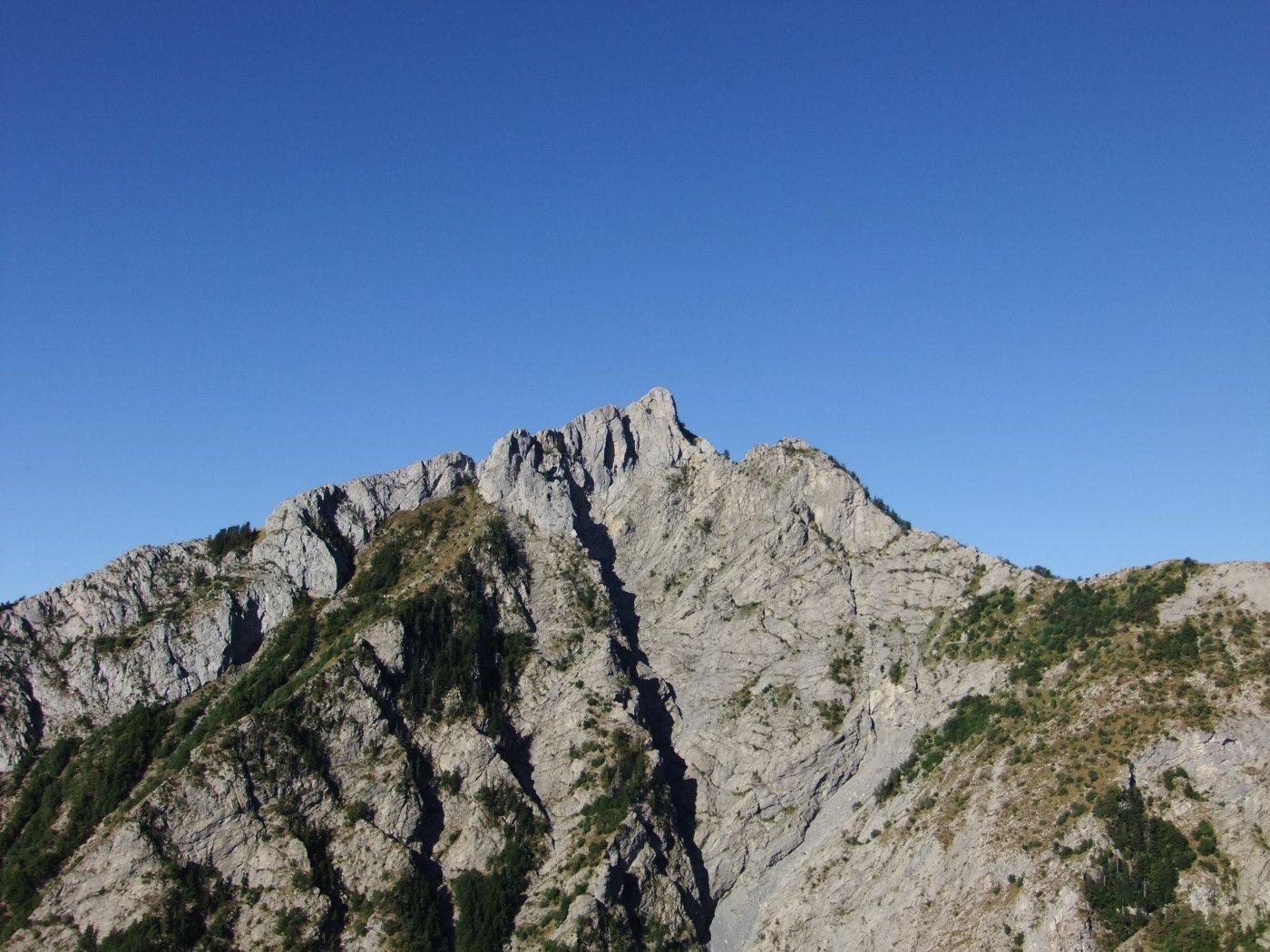 Toraggio (Monte) dalla Colla Melosa per il Sentiero degli Alpini 2015-08-20