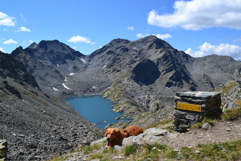 Mont Colmet e Lago di Pietra Rossa visti dal Passo d'Ameran