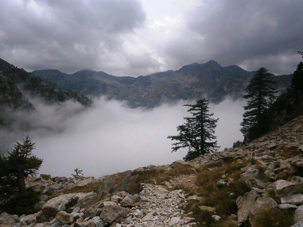 Verso le nebbie