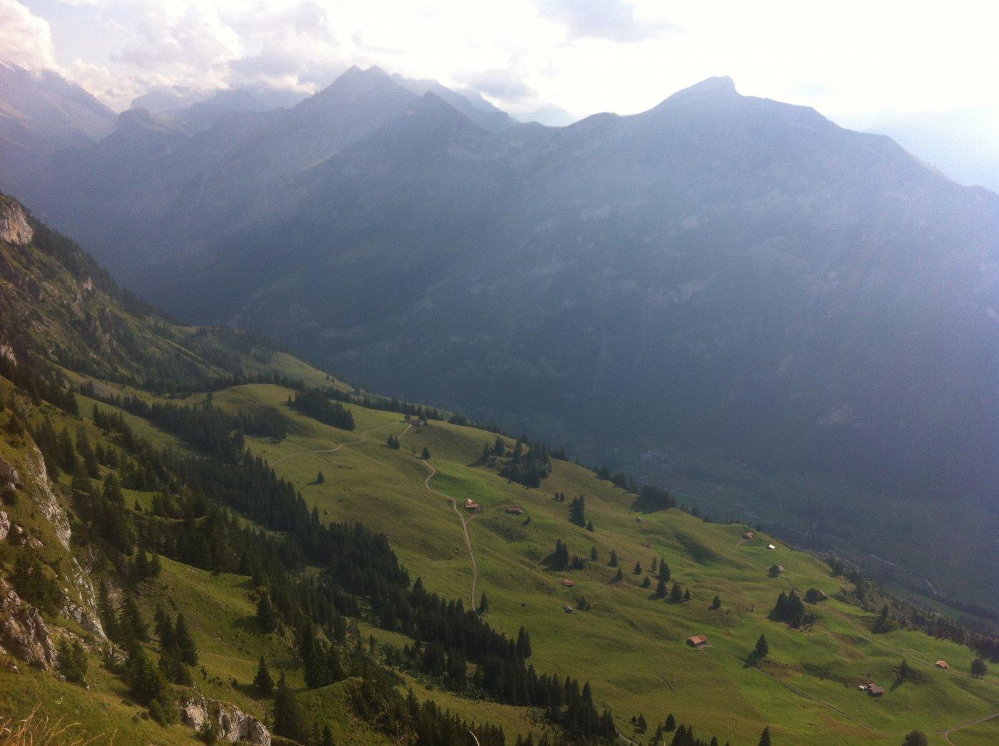 verde Svizzera