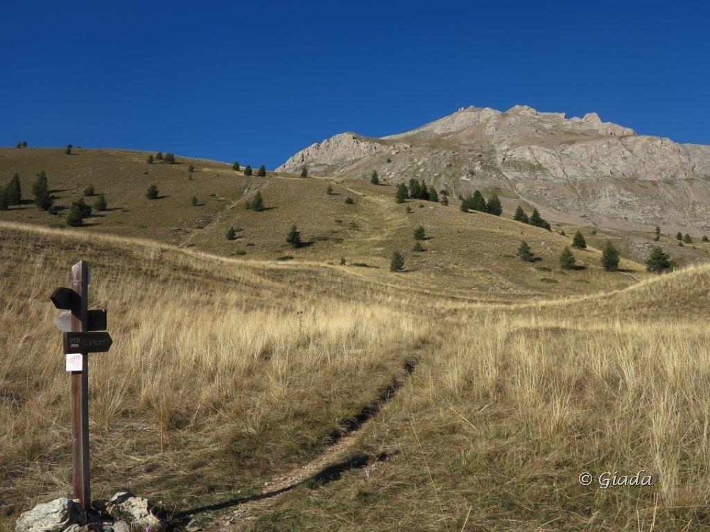 Sul Plateau, da lassù la Tete de Viraysse domina tutto