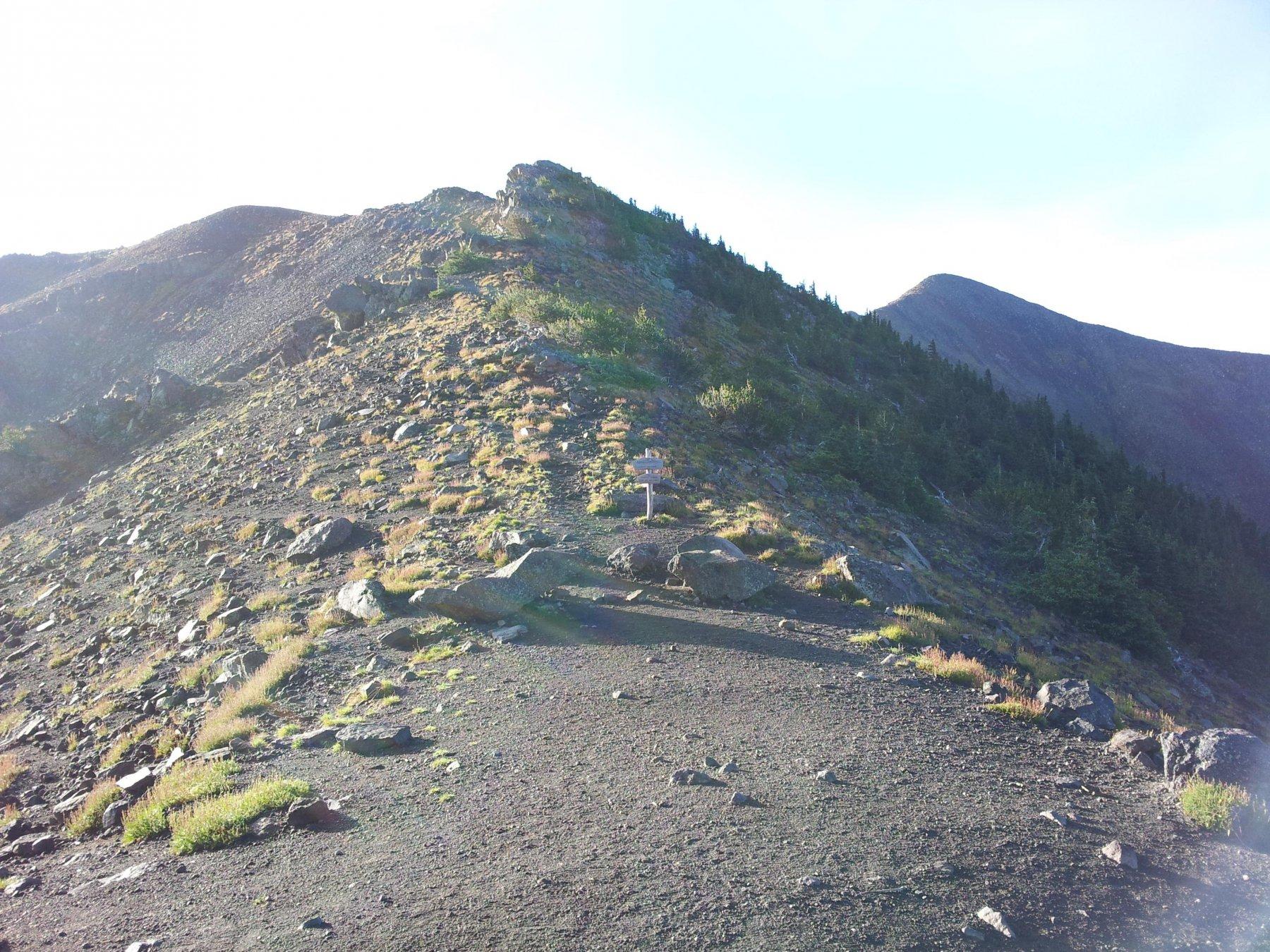 Alla sella guardando verso Sud (Agassiz Peak)