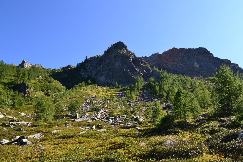 ambiente scendendo all'Alpe Valmeriana
