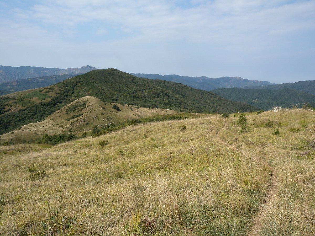 Reixa (Monte), Passi Veleno, Turchino, Faiallo da Masone, giro da Praglia al Pian del Bric Damé 2015-09-10