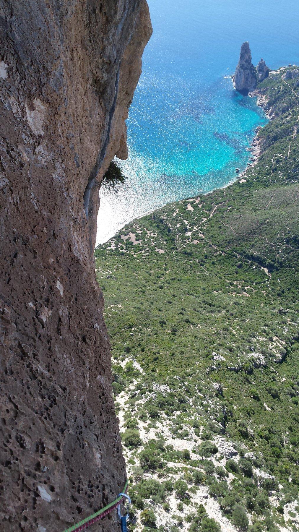 Giradili (Punta) Mediterraneo 2015-09-24